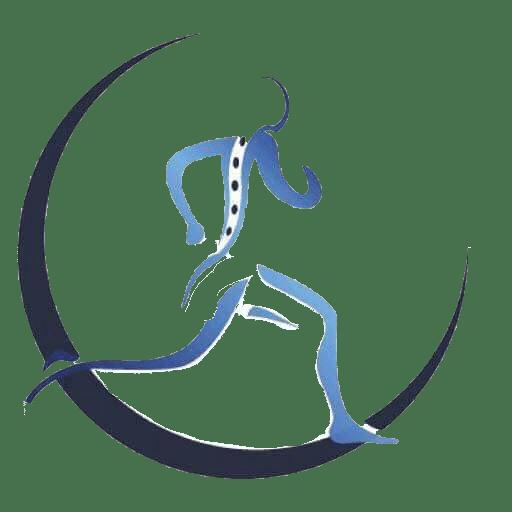 Физиотерапия Пловдив Физиомед Лого